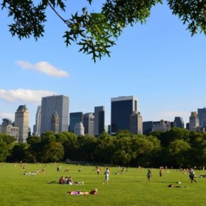 Rookie Chef Round-Up: NYC Parks
